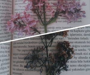book, flower, and love image