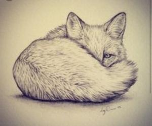 fox, animals, and art image