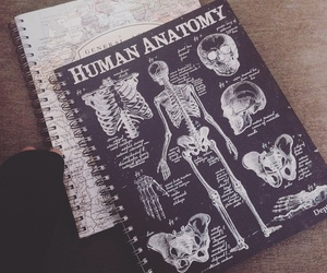 notebook, anatomy, and human image