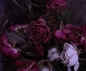 flowers, dark, and purple image