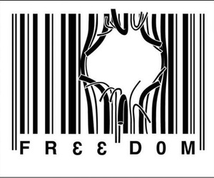 freedom, free, and black and white image