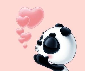 hearts, panda, and love image