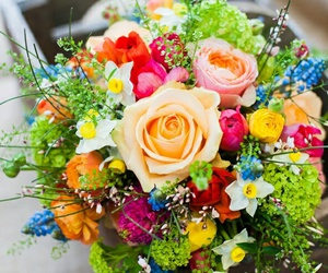 colorful, flowers, and fresh cut flowers image