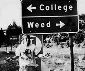 weed, college, and black and white image