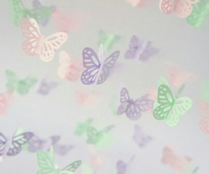butterfly, cute, and pastel image