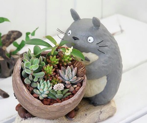 japan, plant, and totoro image