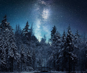 light, nature, and night image