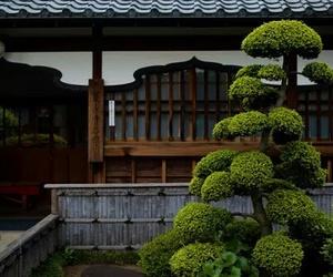 buddhism, zen, and travel image