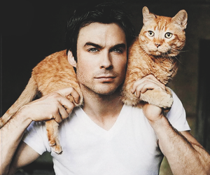 ian somerhalder, cat, and tvd image
