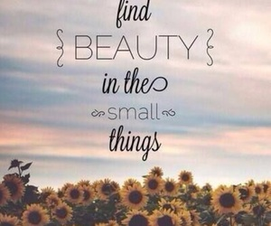 quote, beauty, and flowers image