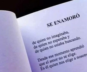 love, frases, and book image