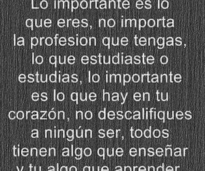aprender, profesion, and frases image