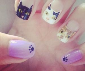 cat nail girls cute image