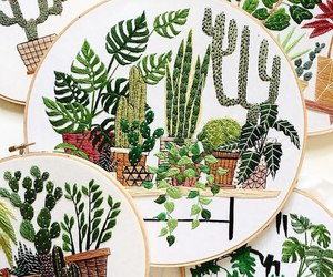 plants, boho, and cactus image
