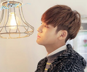 mingyu and Seventeen image