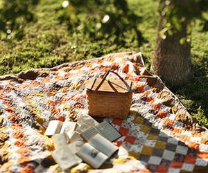 books, picnic, and nature image