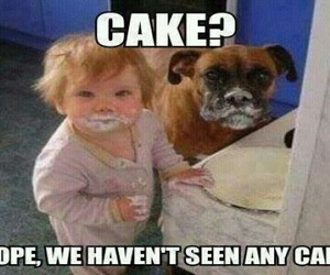 baby, cake, and dog image