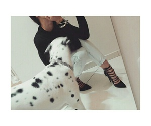 dalmatian, disney, and shoes image