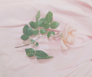 aesthetic, pale, and pink image