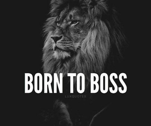 boss, born, and life image