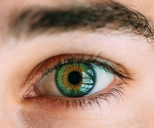 eye beutiful green image