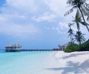 beach, ocean, and wanderlust image
