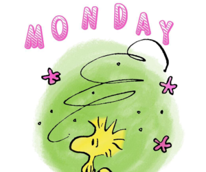 monday, peanuts, and woodstock image