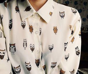 fashion, owl, and shirt image