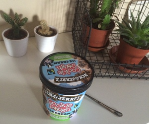 grunge, ice cream, and plants image