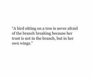 bird, quote, and wings image