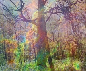 tree, psychedelic, and hipster image