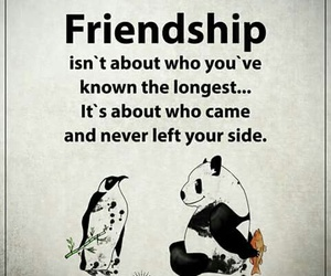 bff, friendship, and inspiration image