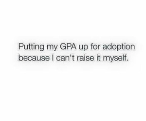 funny, school, and gpa image