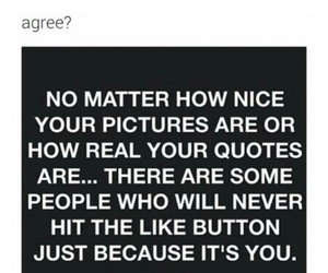quotes, picture, and like image
