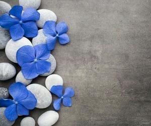 azul, flores, and piedras image