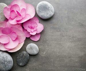 flores, rosas, and rocas image