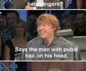 funny, lol, and ginger image