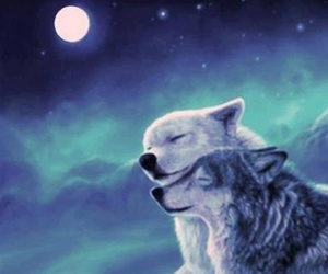 wolfe image