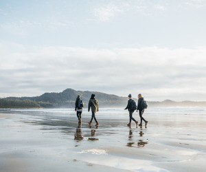 friends, beach, and travel image