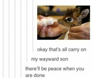 giraffe, supernatural, and carry on my wayward son image