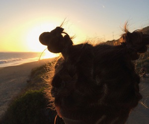 aesthetic, hairstyle, and beach image