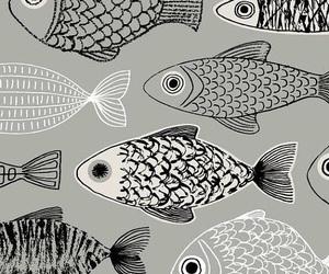 fish and wallpaper image