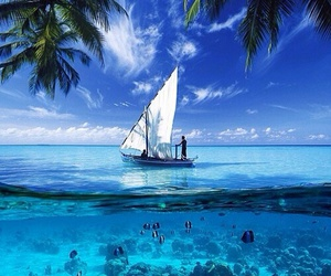 summer, ocean, and boat image