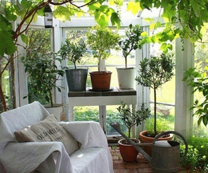 greenhouse and home image