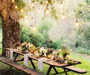 nature, light, and garden image