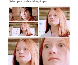 harry potter, funny, and crush image