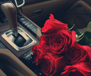 car, care, and red roses image