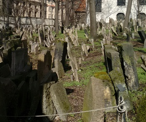 czech, death, and cemetry image