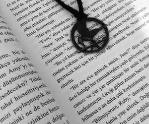 book and hunger games image