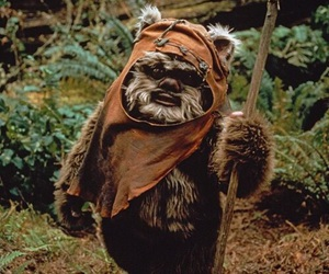 star wars and ewok image